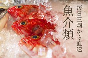 毎日三陸から直送魚介類